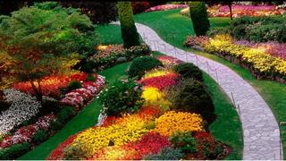 モダンな日本庭園 1 ブログ用.png